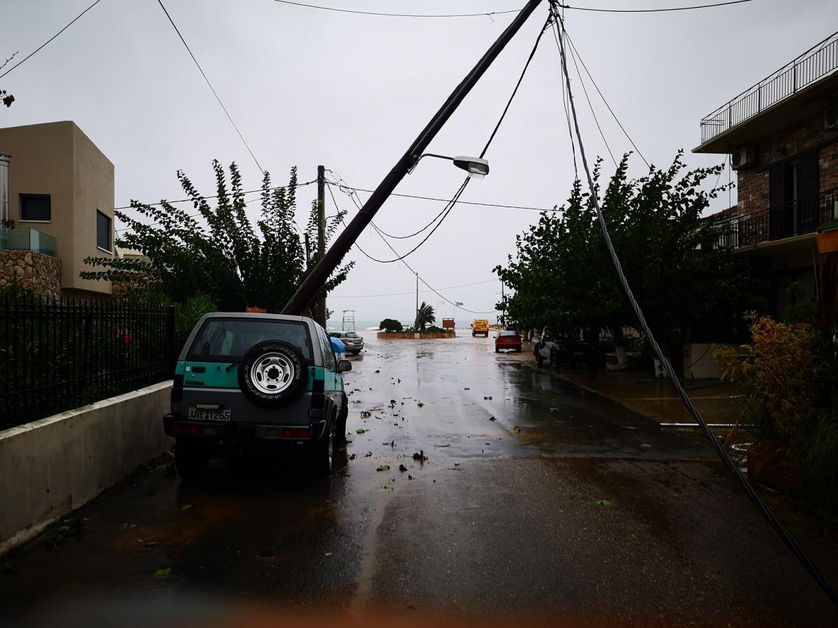 Κακόβατος: Ζημιές από την κακοκαιρία -Ξεριζώθηκαν δέντρα και έπεσαν κολώνες (photos)
